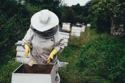 apicoltura prodotti a ragusa